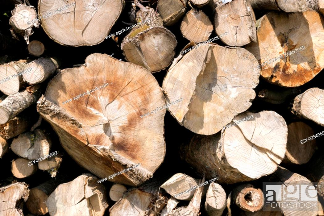Imagen: Picture of stacked and chopped tree trunks.