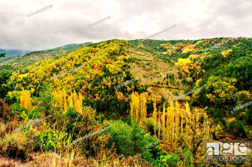 Stock Photo: Autumn in the Pyrenees.