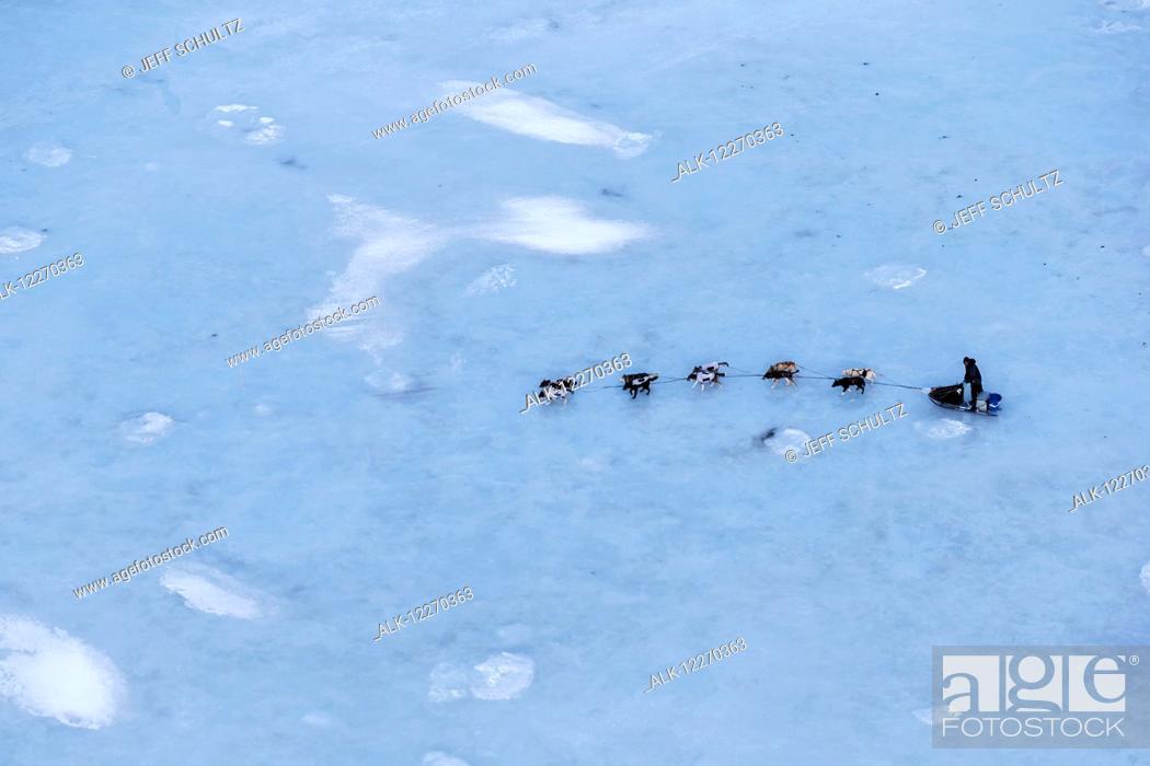 Imagen: Aerial of Ray Redington Jr. on the glare sea ice of Golovin Bay nearing Golovin during the Iditarod Sled Dog Race 2014.