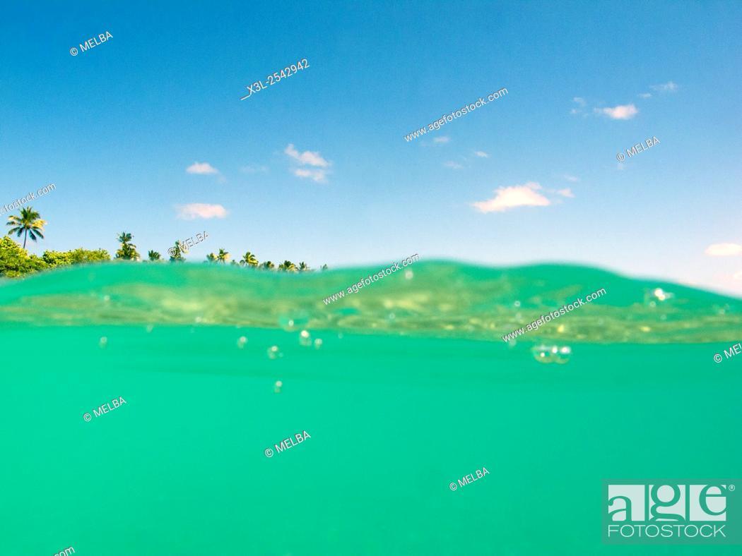 Imagen: Foa island. Ha'apai islands. Tonga. Polynesia.