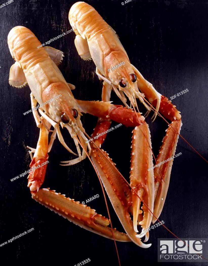 Stock Photo: dublin bay prawns.