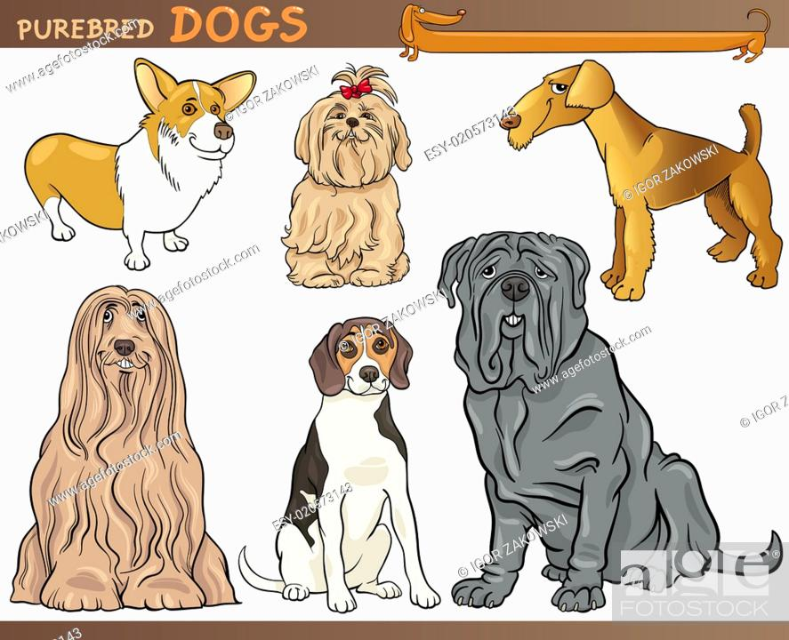 Stock Photo: purebred dogs cartoon illustration set.