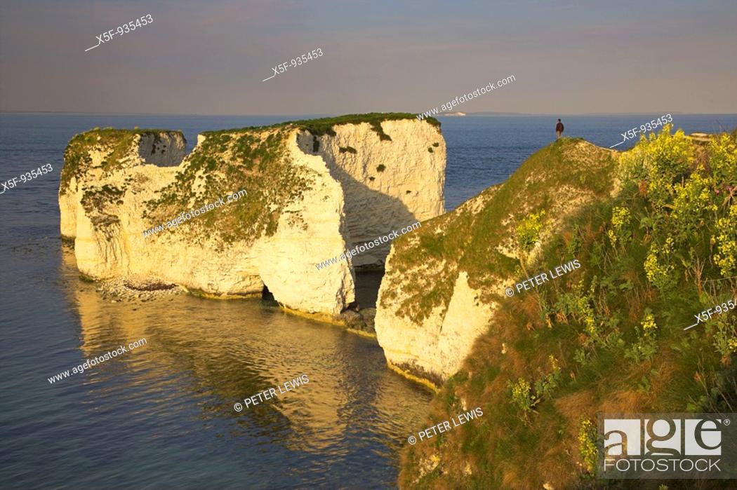 Stock Photo: Old Harry Rocks nr Swanage Dorset.
