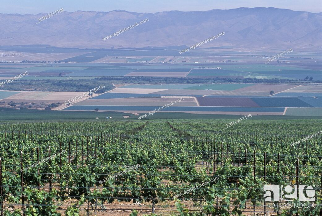 Stock Photo: CALIFORNIA - View of Salinas Valley from vinyards that line the hillsides.