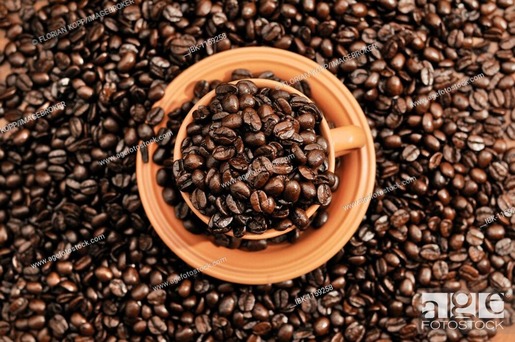 Stock Photo: Coffee beans in a cup.
