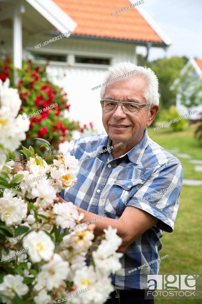 Stock Photo: Senior man in garden.