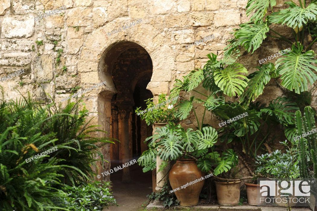 Imagen: baños árabes, - Banys Ã. rabs - portal con arco de herradura , siglo X, Palma, Mallorca, islas baleares, españa, europa.