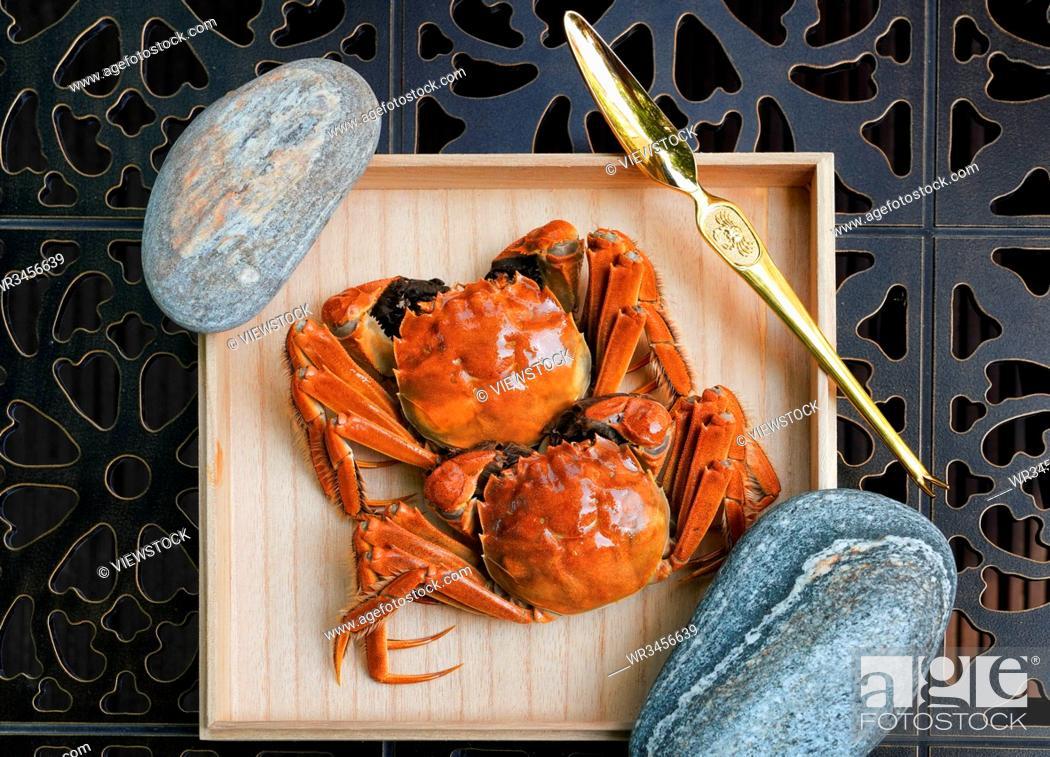 Stock Photo: A crab.