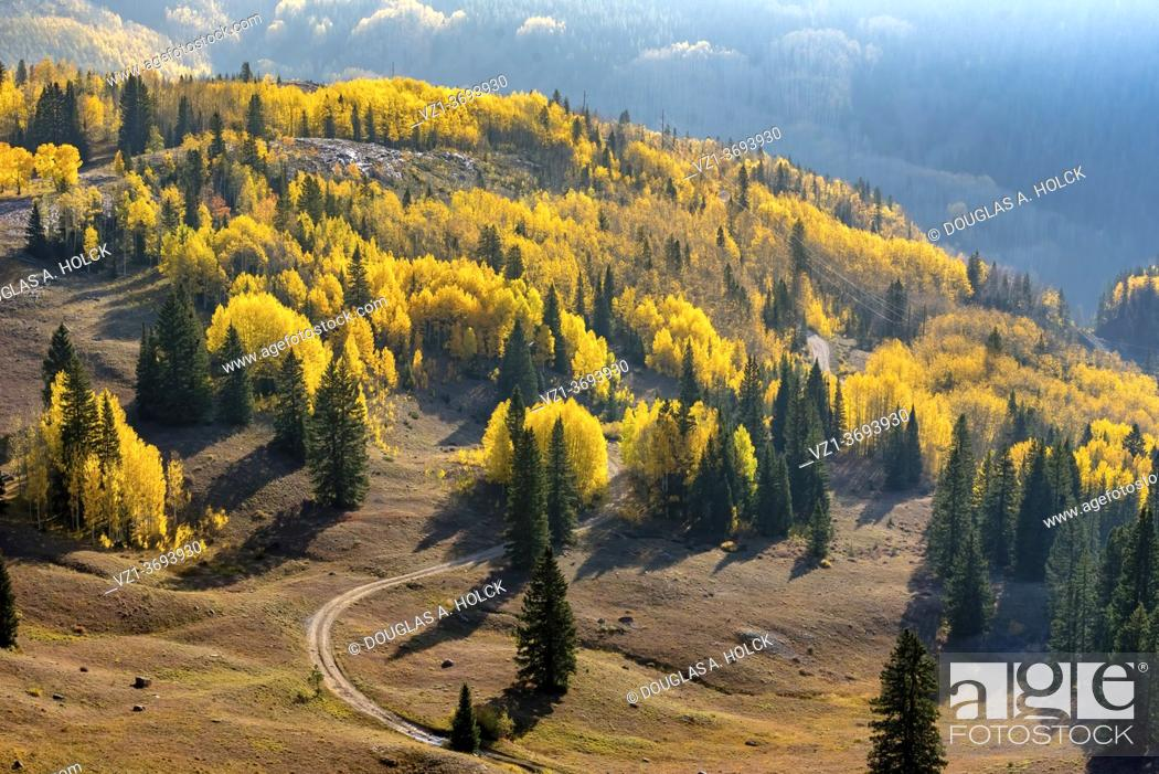 Imagen: Road amidst the Gold of the San Juan Mountains Ouray CO USA.