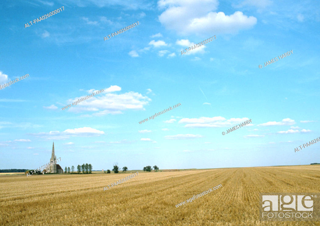 Stock Photo: France, Picardy, field with trees and church in distance.