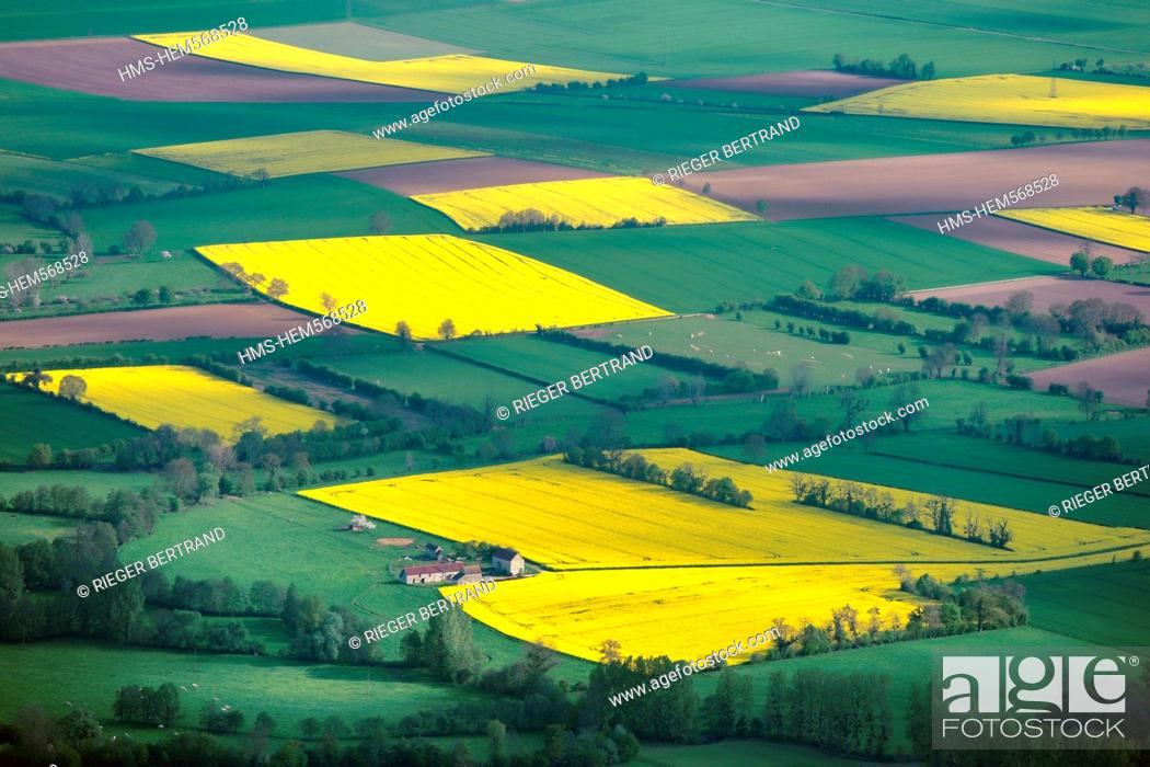 Imagen: France, Eure, field of rape in blossom aerial view.