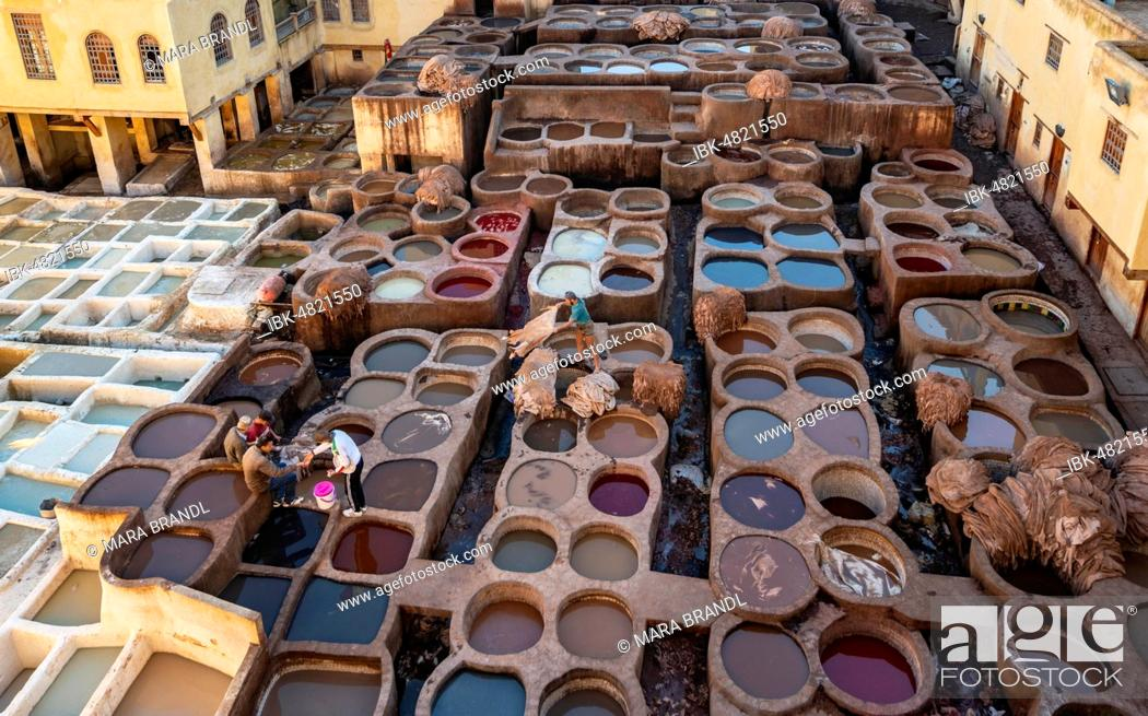 Photo de stock: View over tannery, workers dyeing leather, tanks with dye, dyeing plant, tannery, tannery Chouara, tannery and dyeing district, Fes el Bali, Fes, Morocco.