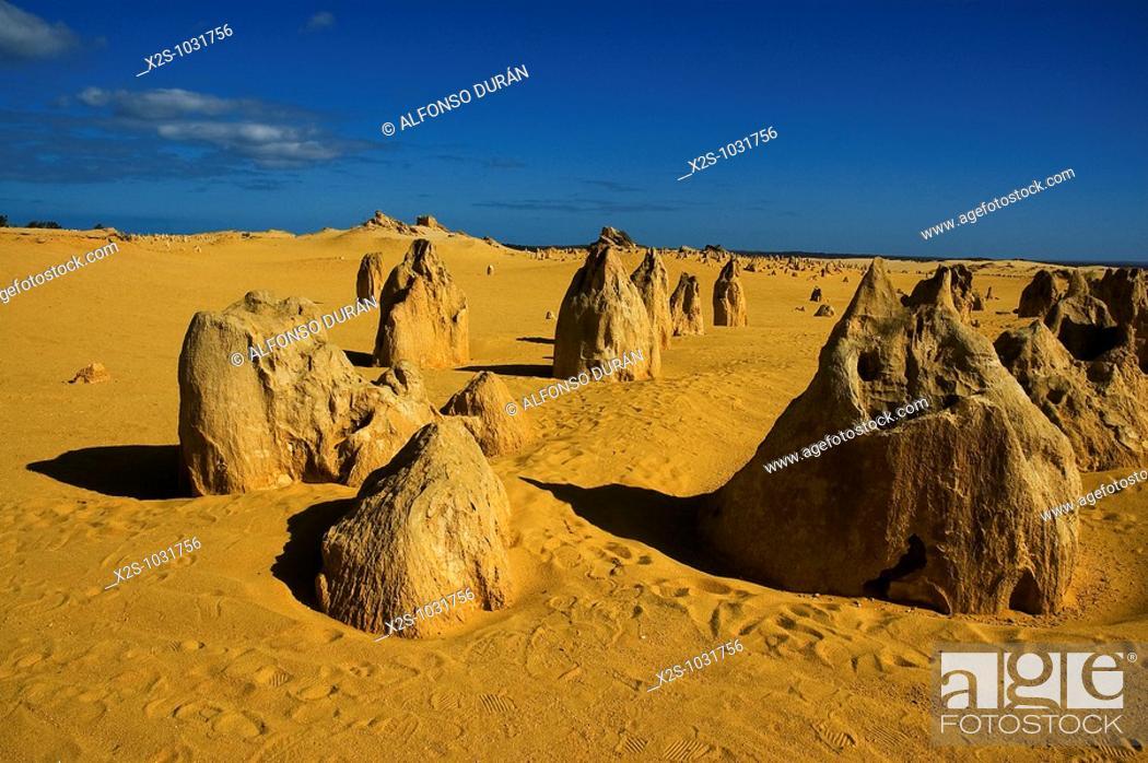 Stock Photo: Pinnacles, Nambung National Park, Western Australia, Australia.
