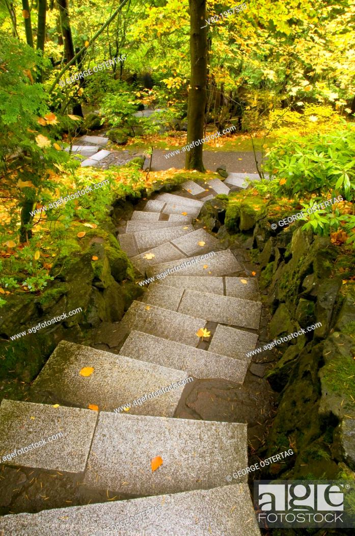 Stock Photo: Stairway in Natural Garden, Portland Japanese Garden, Washington Park, Portland, OR.