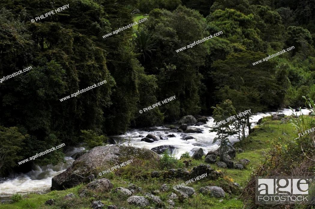 Stock Photo: River Apuela, Imbabura Province, Ecuador.