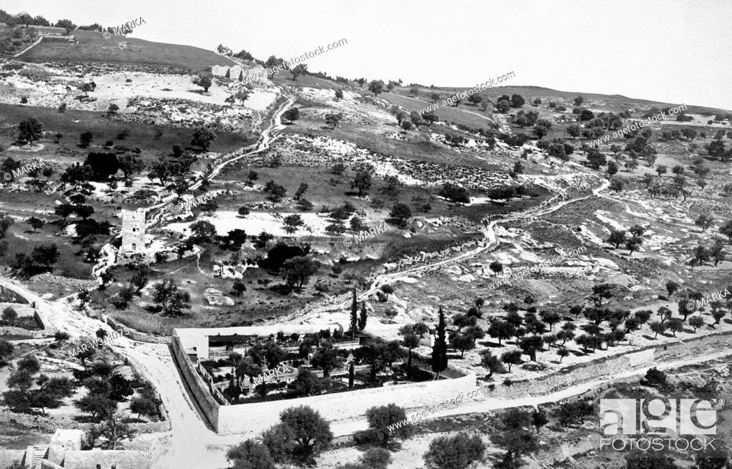 Israele Gerusalemme Il Giardino Dei Getsemani 1910 Israel Jerusalem The Getemane Garden Stock Photo Picture And Rights Managed Image Pic Mar W343075 Agefotostock