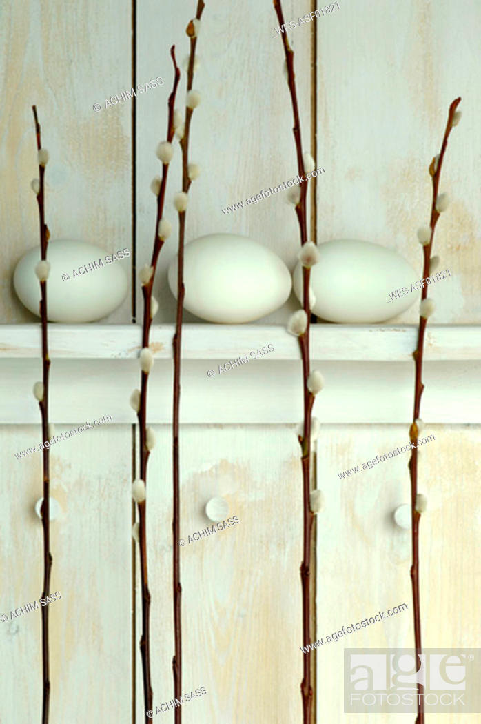 Stock Photo: Easter eggs lying on shelf with Pussy Willow twigs.
