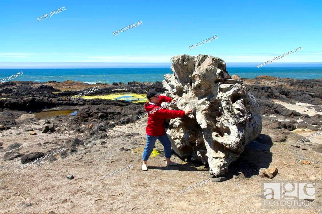 Stock Photo: Cape Perpetua, Oregon coast.