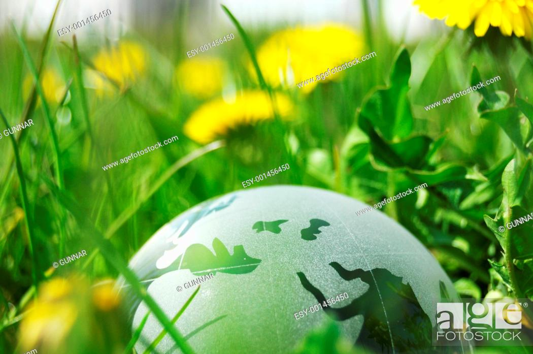 Stock Photo: glass globe or earth in grass.