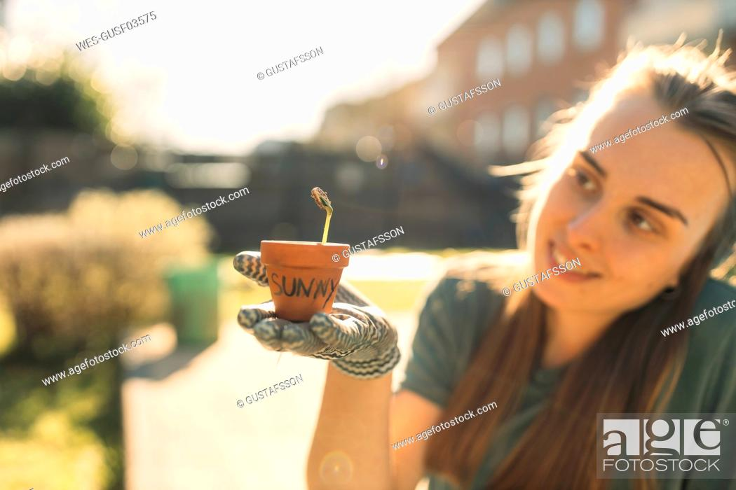 Stock Photo: Young woman holding a seedling in garden in sunshine.