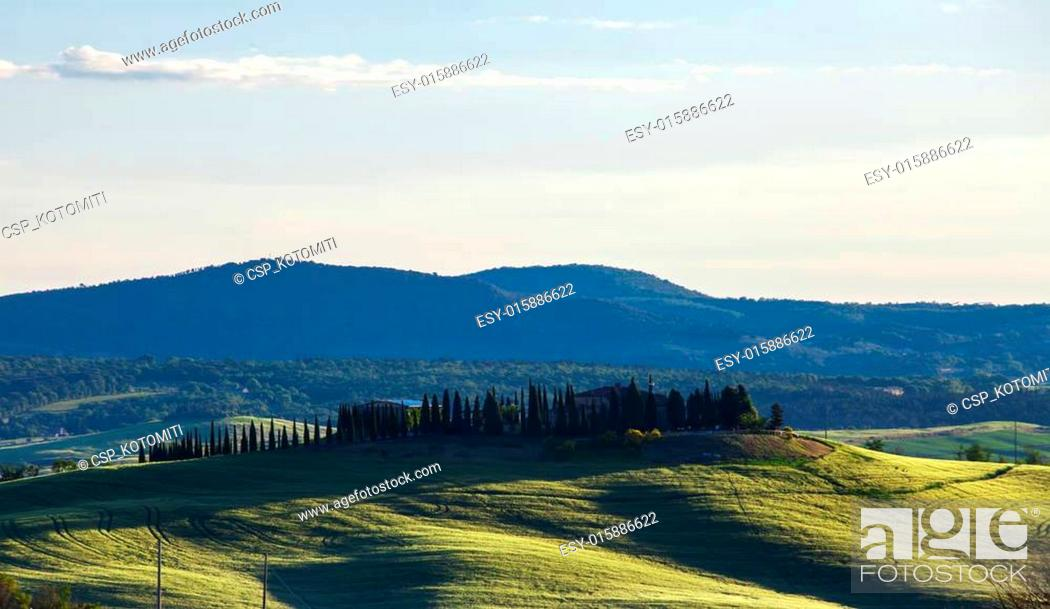 Stock Photo: Beautiful summer landscape with the cypress avenue, Tuscany, Ita.