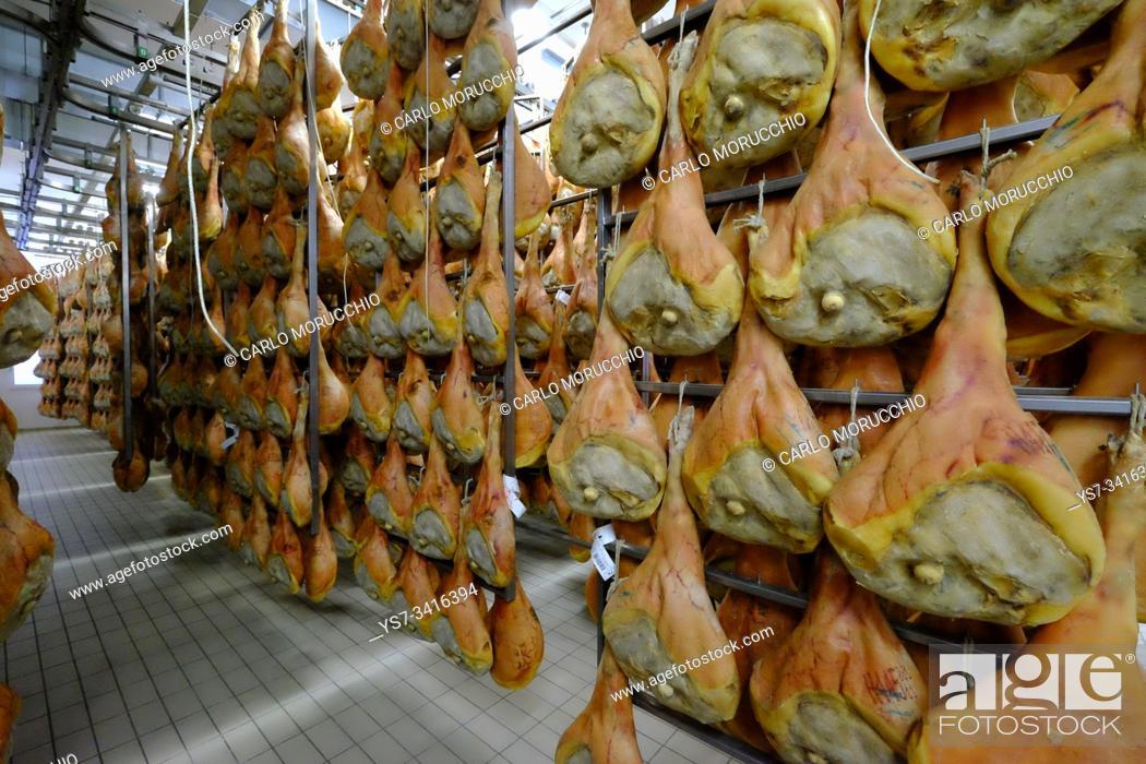 Imagen: San Daniele ham preparation and maturing, San Daniele del Friuli, Udine, Friuli Venezia Giulia, Italy, Europe.