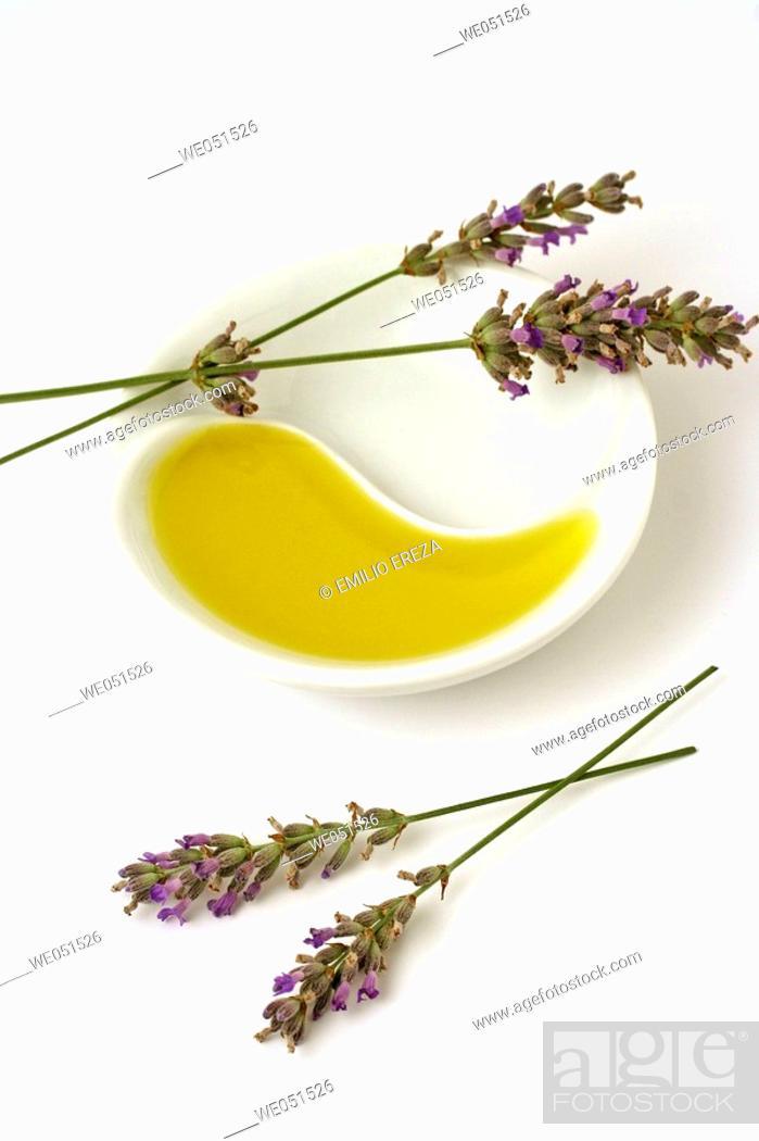 Stock Photo: Lavender essential oil (Lavandula officinalis).