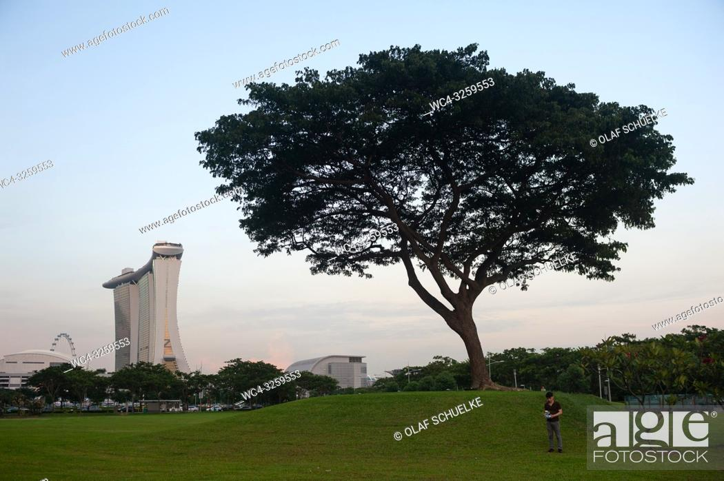 Imagen: Singapore, Republic of Singapore, Asia - A man is seen standing next to a tree flying a drone over Marina Bay with the Marina Bay Sands Hotel in the backdrop.