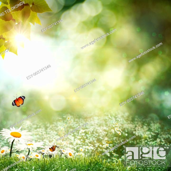 Stock Photo: Abstract natural backgrounds with beauty bokeh.