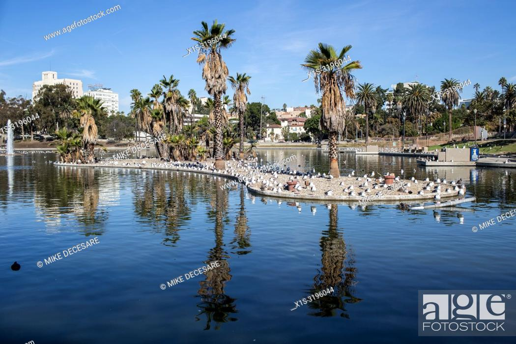 Stock Photo: MacArthur Park in LA's Westlake neighborhood dates back over a century and was the title of an iconic rock 'n roll hit in the 1960s.