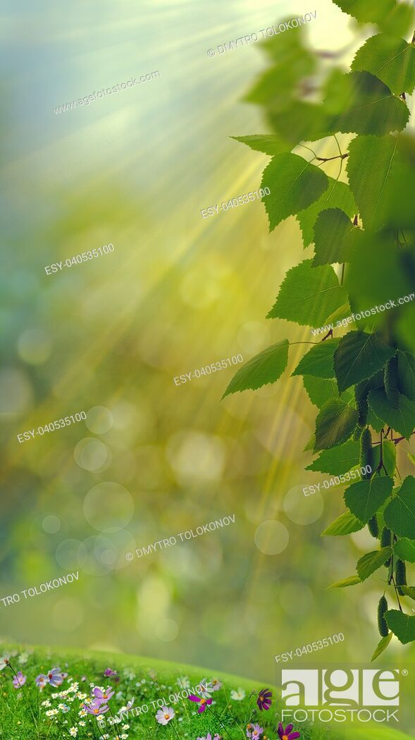 Stock Photo: Funny seasonal panoramic banner with bright foliage and beauty bokeh.