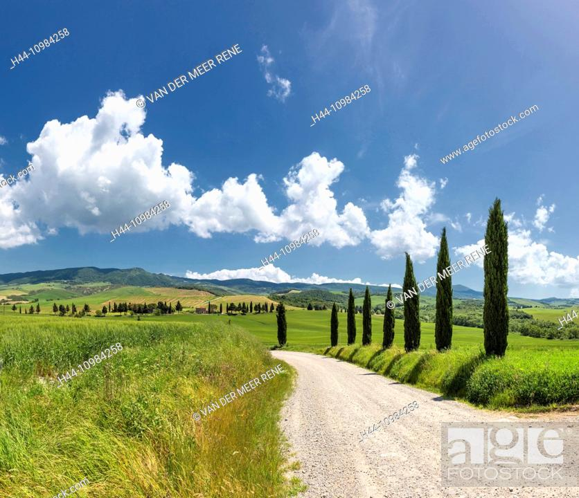 Stock Photo: Val d'Orcia valley in Tuscany.
