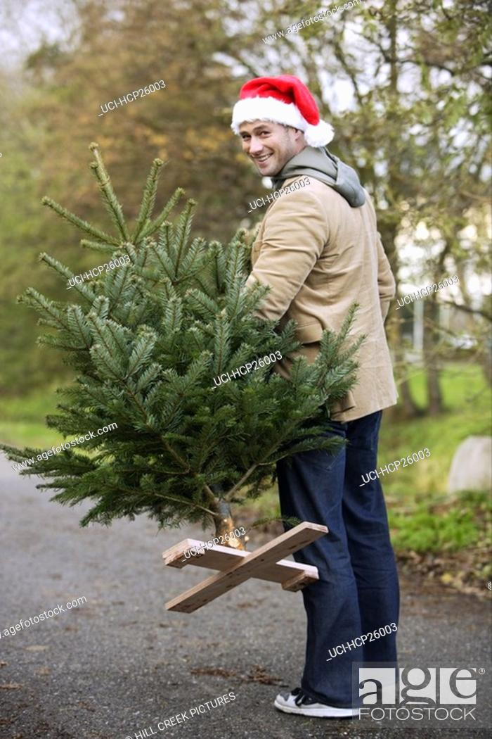 Stock Photo: Man carrying a Christmas tree.
