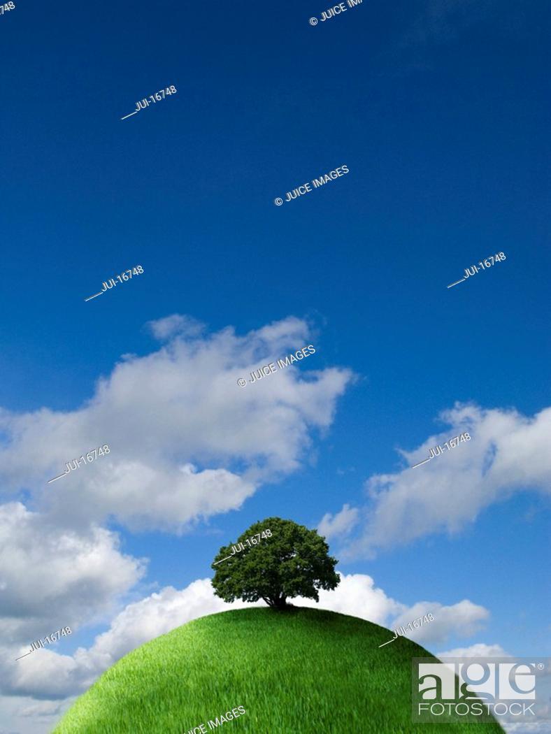 Stock Photo: Tree on top of grassy globe.