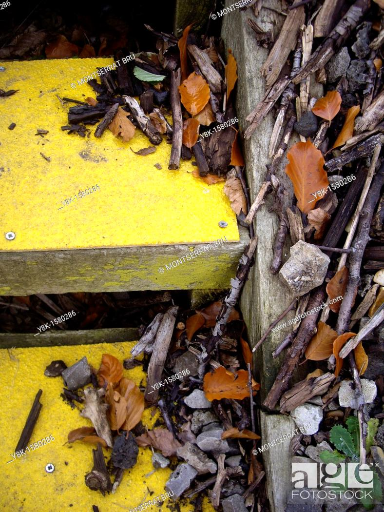 Stock Photo: Yellow outdoors steps.