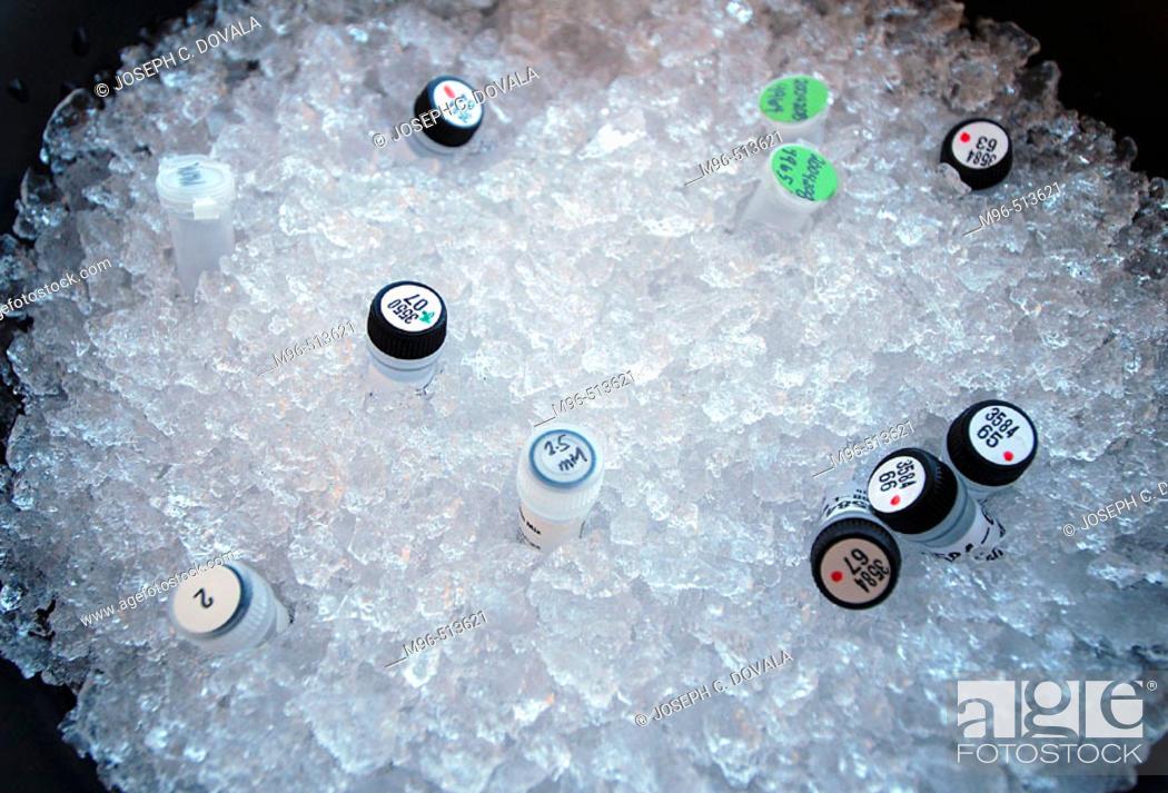 Stock Photo: Samples on ice.