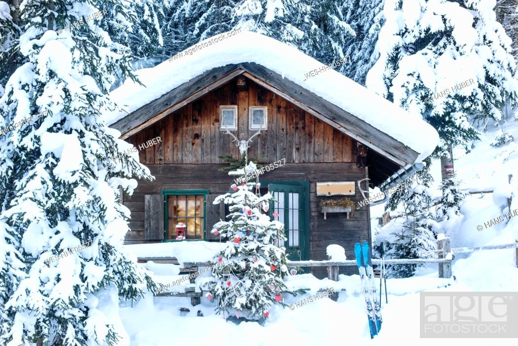 Stock Photo: Austria, Altenmarkt-Zauchensee, Christmas tree at wooden house in snow.
