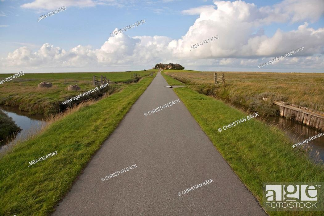 Stock Photo: Dyke on the Hallig Hooge, Schleswig - Holstein, North Germany, Germany,.