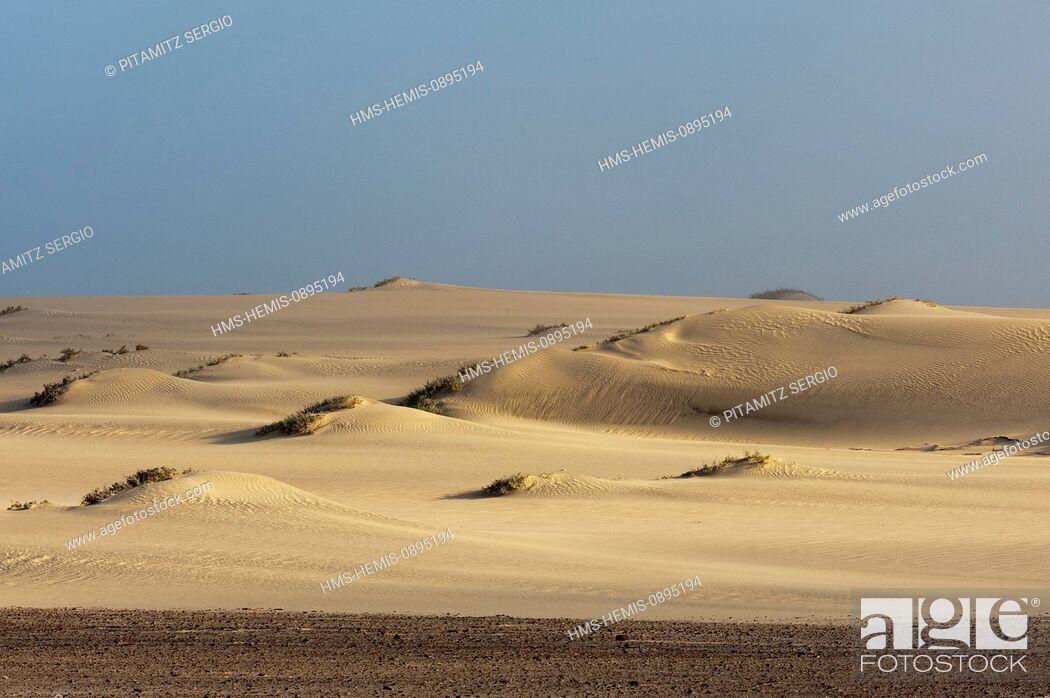 Stock Photo: Namibia, Skeleton Coast National Park, Sand dunes.