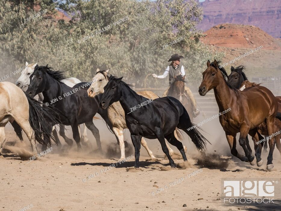 Imagen: Lariat in hand, a cowgirl wrangler drives a herd of horses out of the corral at the Red Cliffs Ranch near Moab, Utah.