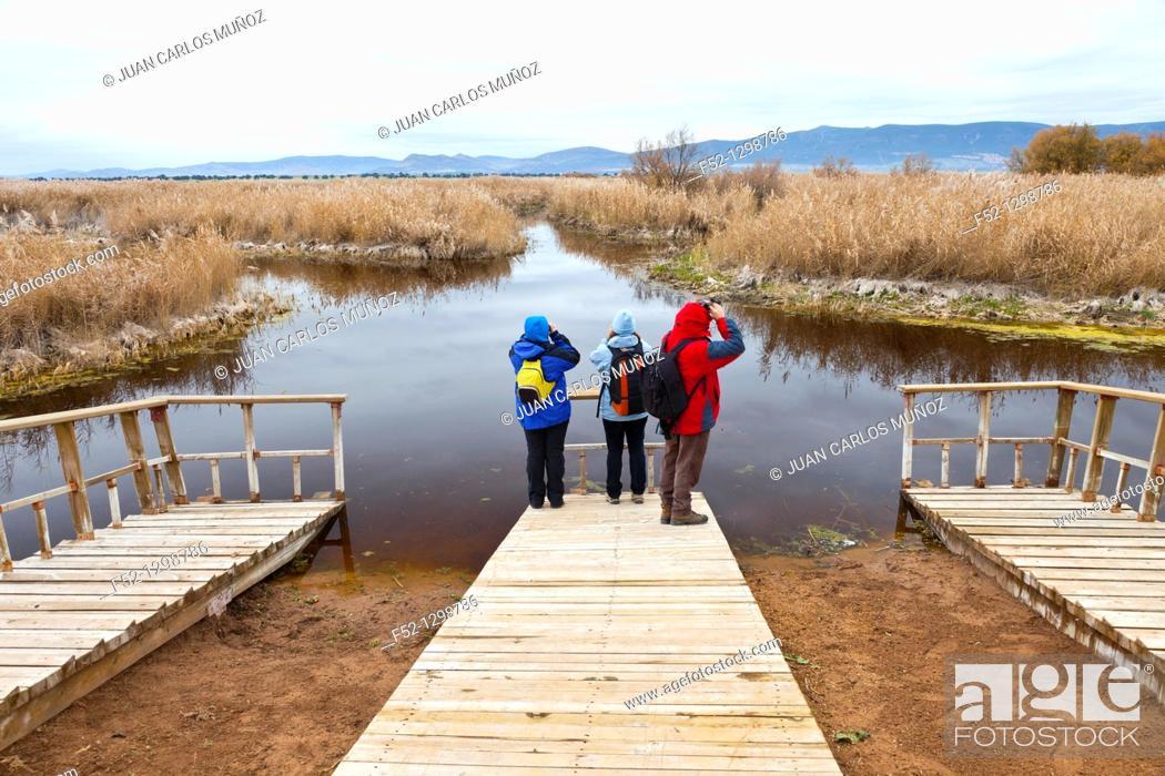 Stock Photo: Tablas de Daimiel National Park, Ciudad Real, Castile-La Mancha, Spain.