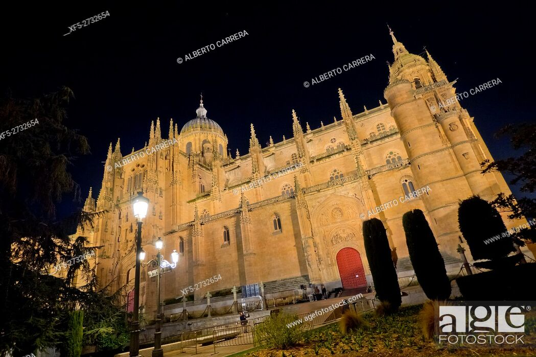 Imagen: Facade of Puerta de Ramos,New Cathedral of Salamanca, Cathedral of the Asunción de María, Gothic Renaissance Baroque Style,16th-18th century.