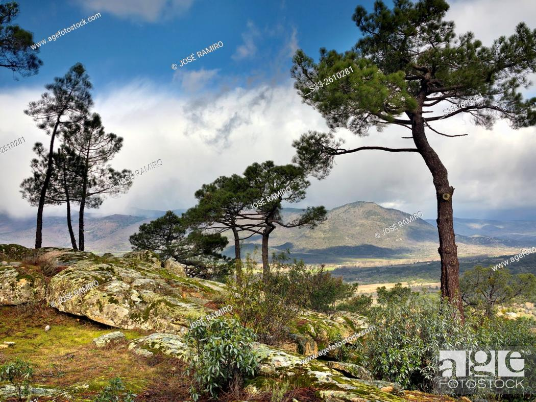 Stock Photo: Sierra de Gredos from the Piquillo. Cadalso de los Vidrios. Madrid. Spain. Europe.