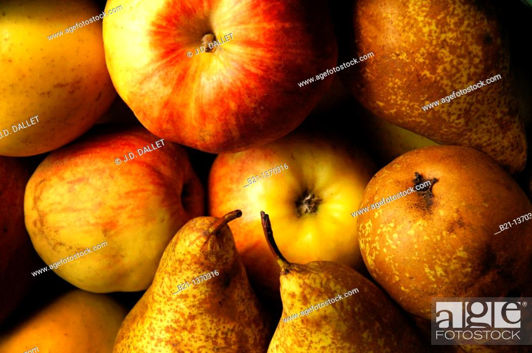 Stock Photo: Apples and pears.