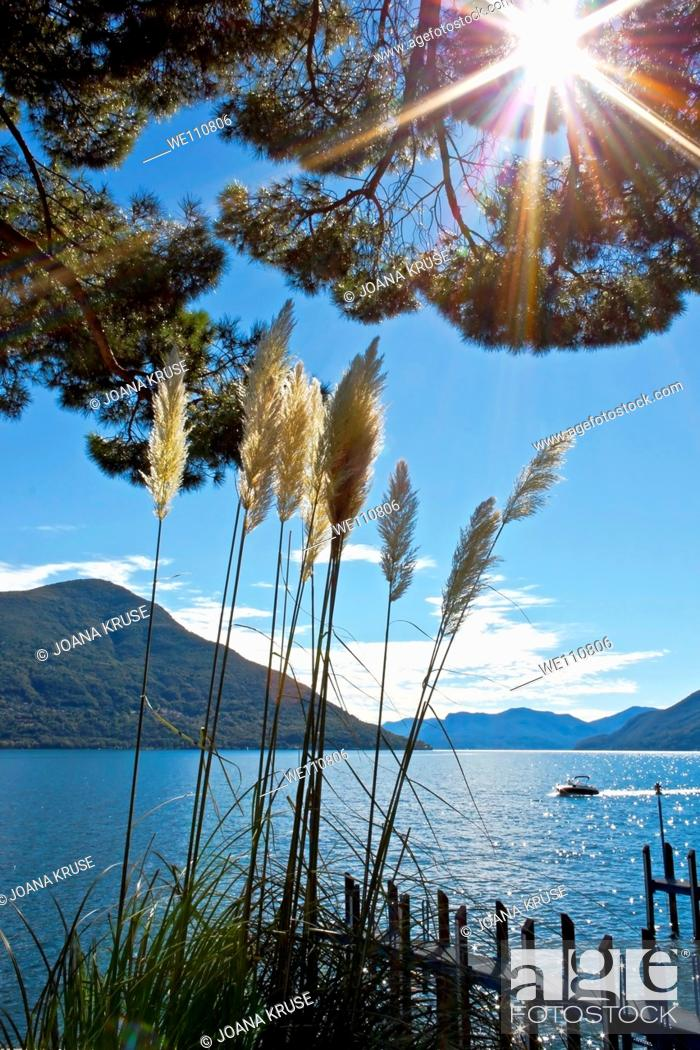 Stock Photo: impression of the Lake Maggiore, which is located in the south of Switzerland and the north of Italy.