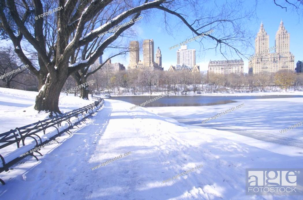 Stock Photo: Park benches with snow in Central Park, Manhattan, New York City, NY.