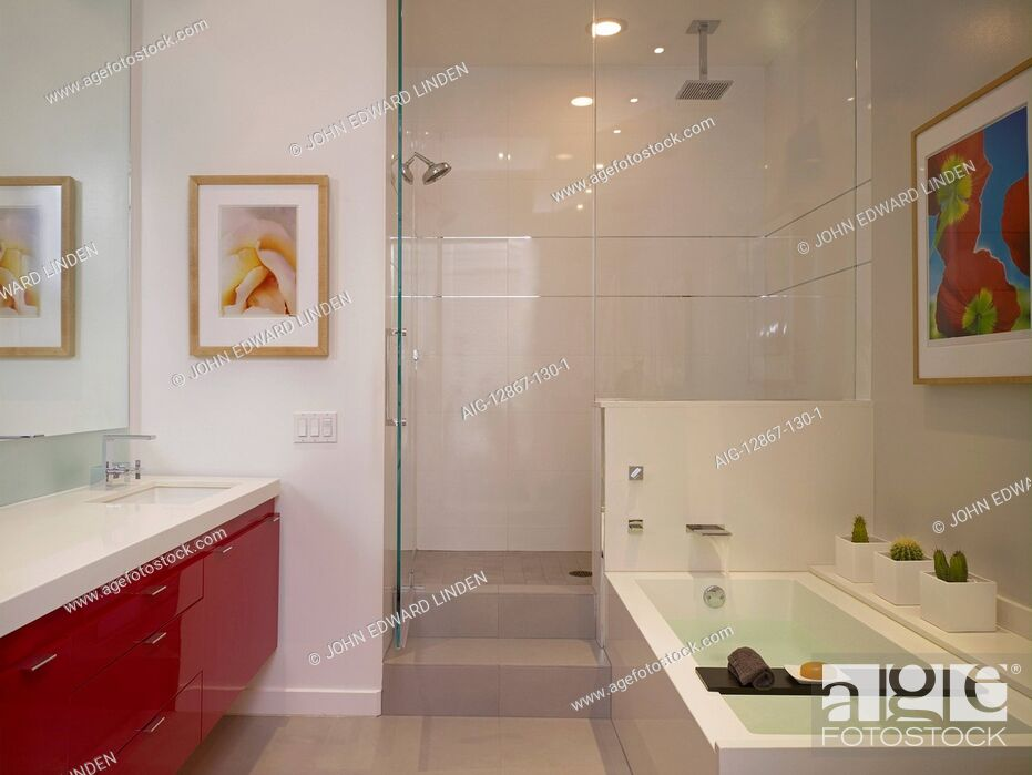 Stock Photo: Bathroom and shower cubicle in Broadway loft apartment, Hollywood, US.