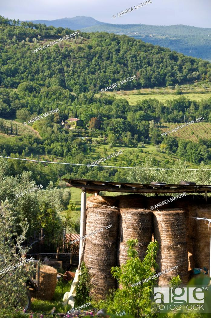 Stock Photo: Hay bales in the Tuscan countryside Italy.