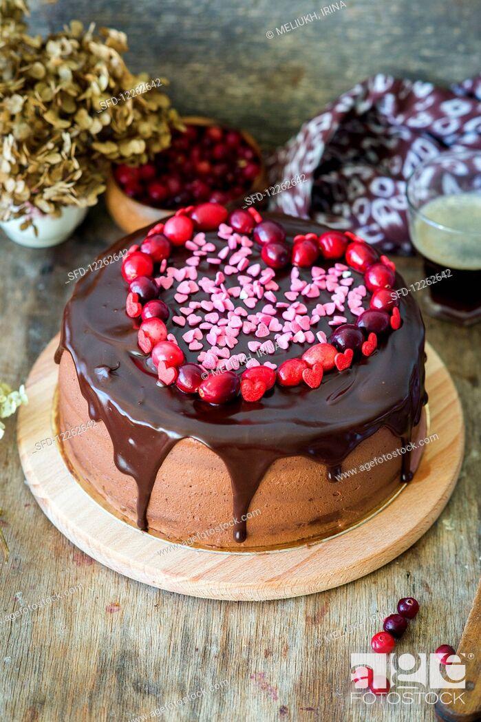 Stock Photo: Chocolate cranberry cake.