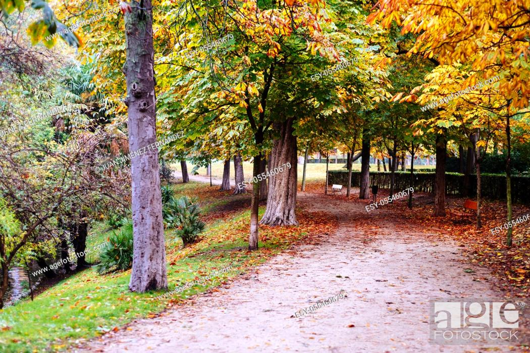 Stock Photo: Scene of the Buen Retiro Park in Madrid during the fall with vibrant colors and the paths covered with fallen leaves.